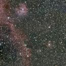 Sea Gull Nebula  IC2177,                                Robert Q. Kimball