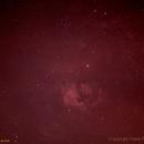 Parts of Cygnus in H-Alpha,                                Hans-Peter Olschewski
