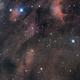 Pelican Nebula - IC5067 - IC5070,                                Gordon Hansen