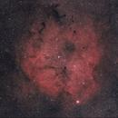IC1396,                                Scotty Bishop