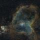 Heart Nebula,                                Pete