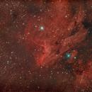 IC5070 Pelican Nebula,                                Nikolaus Popa