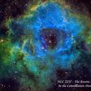 NGC 2237 - The Rosette Nebula   SHO,                                Paul Borchardt