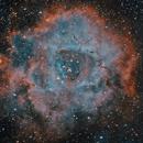 Rosette, HyperStar 11 and Filter Slider,                                tjm8874