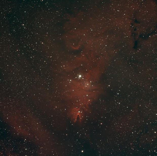 Christmas Tree (NGC 2264),                                AstroBros