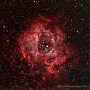NGC 2237 Rosette (Skull) Nebula,                                mtbkr123