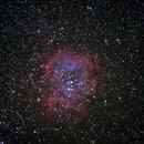 Rosette Nebula ,                                Olivier