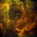 NGC2237,                                Daniele Viarani