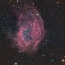 SH2-261, Lower's Nebula,                                John Sim