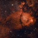 IC 1795 Fish Head Nebula,                                Bob Stewart
