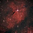 Sadr B region in Cygnus,                                Eric Horton