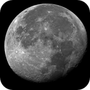 Luna 1-9-2015,                                dami