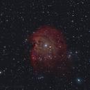 NGC 2174 The Monkey Head Nebula,                                Serge Caballero