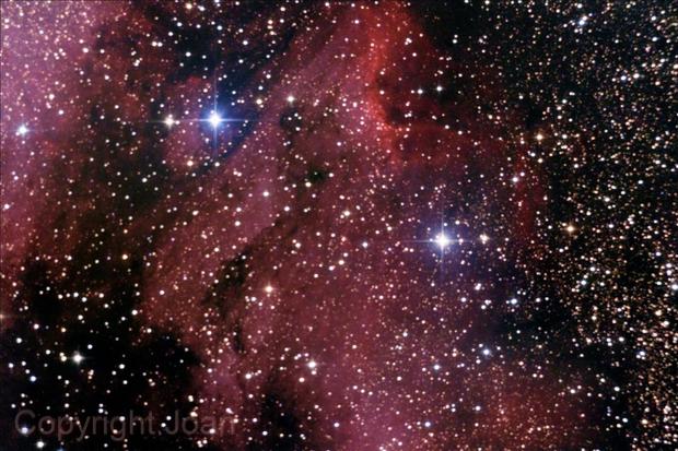 Pelican Nebula IC 5067,                                Joanot