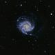 M 101 Pinwheel GalXY,                                Rhett Herring