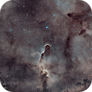 IC1396 Elephants Trunk,                                Michael Caller