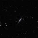 NGC 2683,                                Tony Blakesley