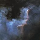 The Cygnus Wall,                                Callum Wingrove