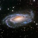 NGC 5033,                                Colin McGill