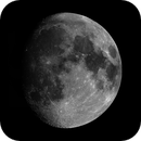 Moon Mosaic,                                Marco Prelini