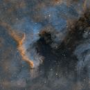 NGC 7000 North America Nebula,                                Arvid Emtegren