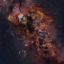 Cygnus Skyscape,                                Alistair Symon