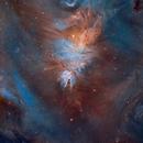 Hubble Variable, Cone and Fox Fur Nebulae (Wide Field!),                                Charles Bonafilia