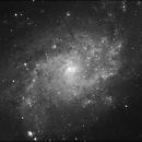 Triangulum Galaxy,                                Trey W