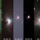 Development of Orion Nebula,                                HaydenAstro(NZ)
