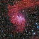 IC405 Flaming Star Nebula,                                Mathias Radl