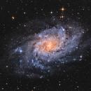 M33 Galassia del Triangolo,                                Andrea Pistocchin...