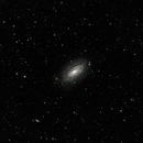 Sunflower galaxy / M63,                                Francesco