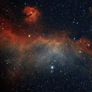IC2177 The Seagull Nebula,                                George Clayton Ye...