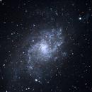 M33 Triangulum Galaxy,                                Randy Flynn
