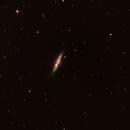 NGC3034,                                Daniele Viarani