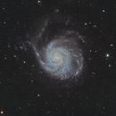 M101 the Pinwheel Galaxy,                                Johan Bogaerts