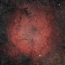 IC 1396,                                Gabe Shaughnessy