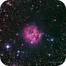 Cocoon Nebula (IC 5146) - LRGB,                                Paul Hutchinson