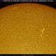 Solar Disc Limb and AR's, HA, 05-01-2020,                                Martin (Marty) Wise