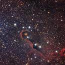 Elephant Trunk Nebula,                                Ross Salinger