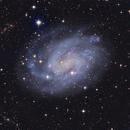 NGC 300 LRGB,                                Tom Peter AKA Astrovetteman