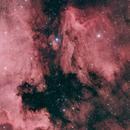 IC 5070 Pelikannebel,                                Gabriele Gegenbauer