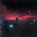 Horsehead nebula,                                Lovag Tamás