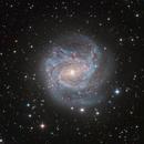 The Southern Pinwheel Galaxy M83,                                DiscoDuck