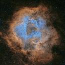 NGC 2237 Rosette Nebula SHO,                                Tom Peter AKA Astrovetteman