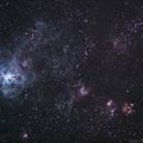 Tarantula Nebula,                                Tiago Ramires Domezi