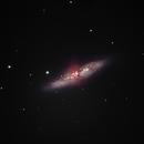 M82 - Cigar Galaxy,                                David N Kidd