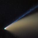 Comet Neowise C/2020 F3,                                Amir H. Abolfath
