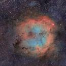 IC1396,                                Carastro