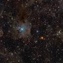 Iris and Ghost (NGC7023 and VdB 141 [Sh2-136]),                                snakagawa